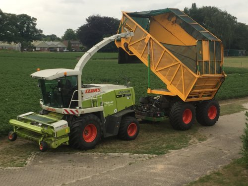 Picture Claas Jaguar 870 Speedstar