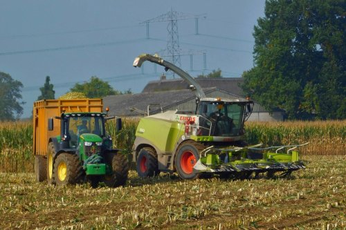 Claas Jaguar 940 van Martin Holland