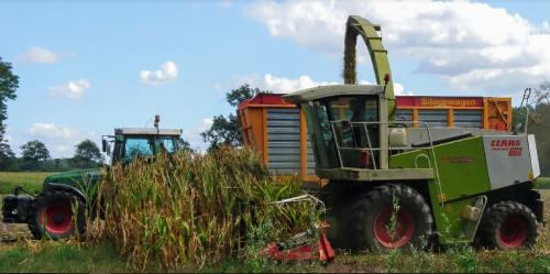 Huiskamp BV aan het maishakselen in Winterswijk-Brinkheurne met een Claas Jaguar 860.. Geplaatst door utwenters op 24-08-2018 om 21:28:34, op TractorFan.nl - de nummer 1 tractor foto website.