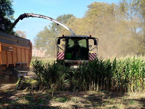 Ooms uit Brecht. Geplaatst door XC 70 op 21-09-2018 om 02:27:34, op TractorFan.nl - de nummer 1 tractor foto website.