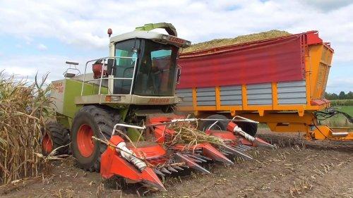 Foto van een Claas Jaguar 840 aan het mais hakselen, foto gemaakt door Volmerfilm. Geplaatst door Fordje4600 op 12-02-2019 om 09:57:06, op TractorFan.nl - de nummer 1 tractor foto website.