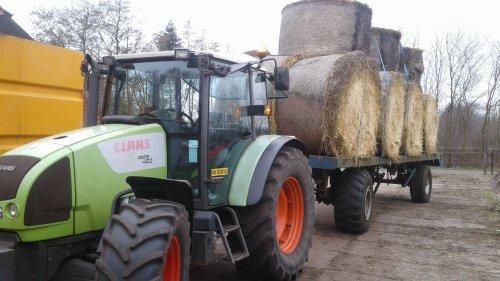 Foto van een Claas Celtis. Geplaatst door schaubagri op 02-03-2019 om 16:35:49, op TractorFan.nl - de nummer 1 tractor foto website.