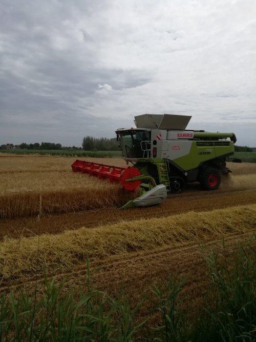 Hier zie je Loonbedrijf De Bruyne (Assenede) × met een Claas Lexion 770.. Geplaatst door Lode103s op 19-07-2019 om 09:38:55, op TractorFan.nl - de nummer 1 tractor foto website.