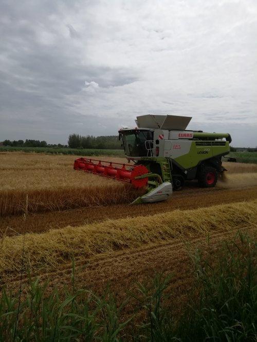 Hier zie je Loonbedrijf De Bruyne (Assenede) × met een Claas Lexion 770.. Geplaatst door Lode103s op 19-07-2019 om 09:38:57, op TractorFan.nl - de nummer 1 tractor foto website.