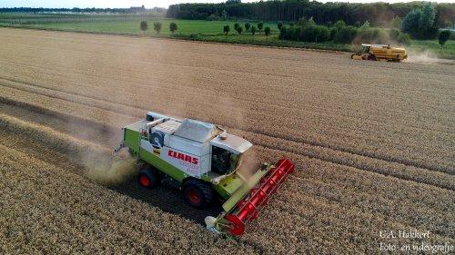 Loonbedrijf de Bruin aan het dorsen met de Lexion 440 deze week. Geplaatst door gypCaseXL op 28-07-2019 om 14:29:15, op TractorFan.nl - de nummer 1 tractor foto website.