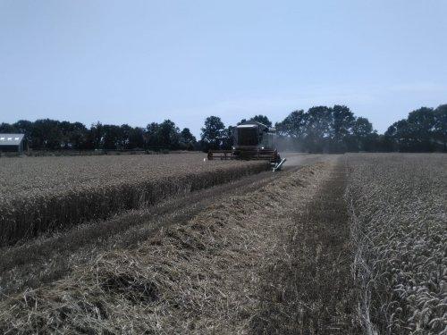 Hier zie je Loon- en Landbouwmechanisatiebedrijf Westerveld (Breedenbroek) × met een Claas Lexion 430. Afgelopen zaterdag in de wintertarwe.