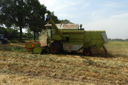 Graan dorsen  https://youtu.be/Q_NLm2treRs. Geplaatst door pekkerietfan op 11-08-2019 om 14:02:28, op TractorFan.nl - de nummer 1 tractor foto website.