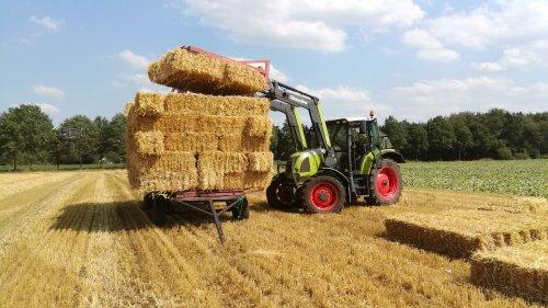 Claas Ares 567ATZ stropakjes laden.. Geplaatst door RobinL13 op 14-08-2019 om 12:20:21, op TractorFan.nl - de nummer 1 tractor foto website.