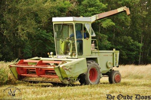 Een prachtige nieuwe hakselaar op Ursels grondgebied. Op een veld midden in de bossen zien we deze Claas Jaguar SF 70 aan het werk. De machine werd gehaald in Zuid-Frankrijk en mag nu aan zijn tweede leven beginnen in België. Als hakselaar zoals nu ofwel als werktuigendrager.  Het gewas dat men hier hakselt is haver met veldbonen. Nadien werd alles met een balenpers in ronde balen gestoken en wordt verkocht aan paarden en schapenboeren.  Meer vind u op http://www.deoudedoos.be