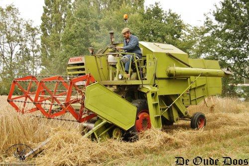 Een prachtige machine, die Claas Consul!  De landbouwer heeft deze machine uit Duitsland naar België gehaald, waar het mag genieten van een welverdient pensioen, maar af en toe nog eens duchtig moet bijklussen, zoals hier in de oogst van spelt.