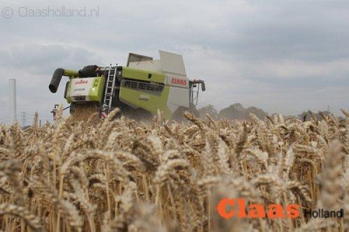 Claas Lexion van Claas Holland