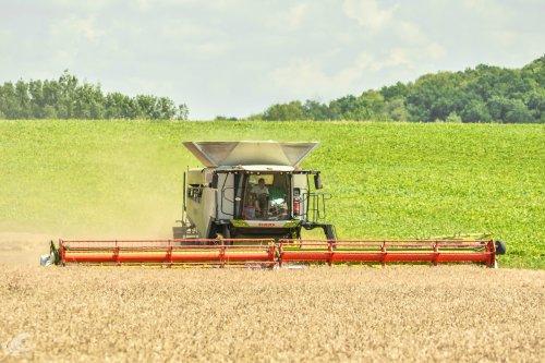 Foto van een Claas Lexion 8900. Geplaatst door jd7920 op 08-08-2020 om 20:32:25, op TractorFan.nl - de nummer 1 tractor foto website.
