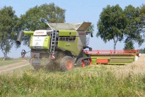 Claas Lexion 8700. Geplaatst door allis man op 23-08-2020 om 11:57:19, op TractorFan.nl - de nummer 1 tractor foto website.
