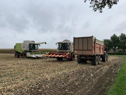 H.j. Looman en Zn. (Velswijk) × op de foto met een Claas Meerdere.. Geplaatst door joozt op 15-10-2020 om 06:28:12, op TractorFan.nl - de nummer 1 tractor foto website.