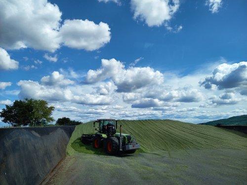Foto van een Claas Xerion 3800 VC bezig met het wegschuiven van mais voor Verschoor fourage.. Geplaatst door trekkerfan16a op 27-10-2020 om 16:22:20, op TractorFan.nl - de nummer 1 tractor foto website.