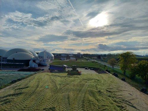 Foto van een Claas Xerion 4000 die mais aan het schuiven is voor Verschoor fourage.. Geplaatst door trekkerfan16a op 27-10-2020 om 16:22:22, met 3 reacties.