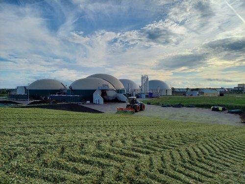 Foto van een Claas Xerion 4000 bezig met het wegschuiven van mais voor Verschoor fourage.. Geplaatst door trekkerfan16a op 28-10-2020 om 16:14:15, op TractorFan.nl - de nummer 1 tractor foto website.