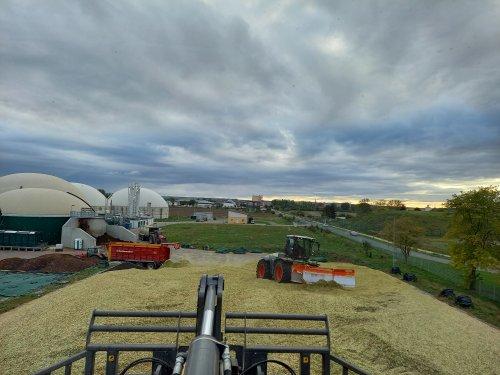 Foto van een Claas Xerion 4000 bezig met het wegschuiven van mais voor Verschoor fourage.. Geplaatst door trekkerfan16a op 28-10-2020 om 16:14:18, op TractorFan.nl - de nummer 1 tractor foto website.