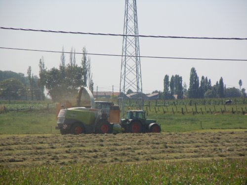 Foto van een Claas Jaguar 950, bezig met gras hakselen.. Geplaatst door beeletje op 07-08-2011 om 16:21:26, op TractorFan.nl - de nummer 1 tractor foto website.