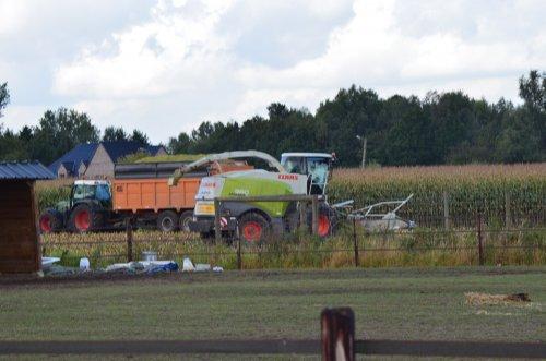 Claas 960 met fendt 820 en dezeure silage-wagen. Maandag gaan we hier ook van start.. Geplaatst door timme936 op 28-09-2013 om 18:15:21, op TractorFan.nl - de nummer 1 tractor foto website.