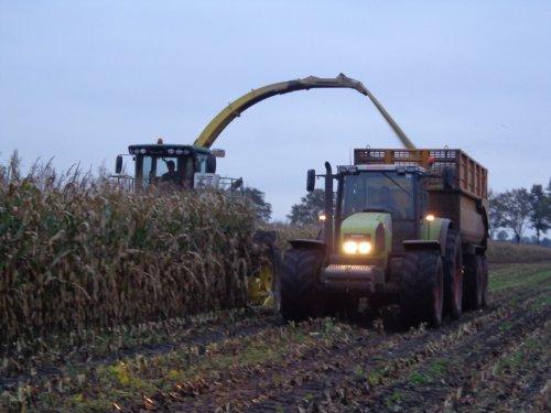 Foto van een Claas Ares 826 RZ van loonbedrijf Pereboom bezig met maïs hakselen.. Geplaatst door Claas fan op 30-10-2013 om 18:00:24, op TractorFan.nl - de nummer 1 tractor foto website.