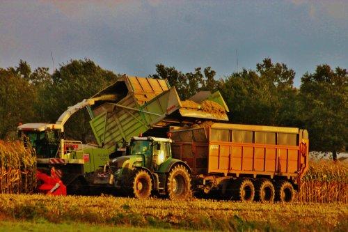 Foto van een Claas Jaguar 900, bezig met maïs hakselen. De claas van loonwerken De Bruyne, Assenede.