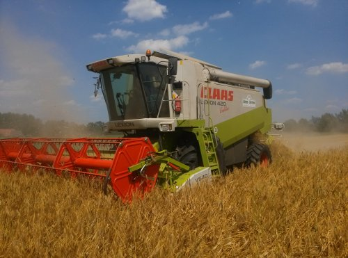 Picture Claas Lexion 420