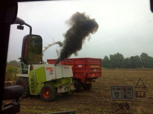 Foto van een Claas Jaguar 880, bezig met maïs hakselen.. Geplaatst door arjan 2850 op 03-10-2014 om 12:25:09, op TractorFan.nl - de nummer 1 tractor foto website.