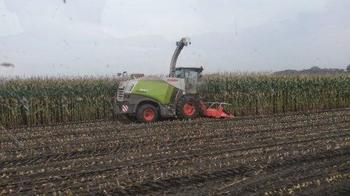 Foto van een Claas Jaguar 840 2014, bezig met maïs hakselen.. Geplaatst door velsje op 05-10-2014 om 19:57:55, op TractorFan.nl - de nummer 1 tractor foto website.