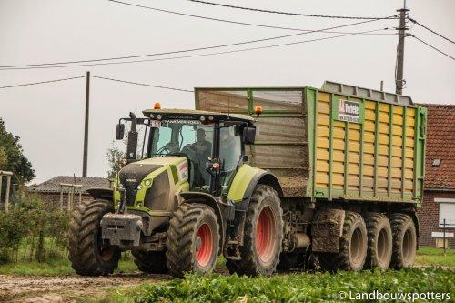 Foto van een Claas Axion 830, bezig met poseren. Verbeke - Poperinge. Geplaatst door tractorfreek op 21-12-2014 om 19:27:42, met 5 reacties.