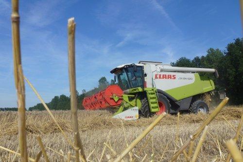 Claas Lexion 520 van Loonbedrijf De Smet - Dielman uit Wachtebeke (B), bezig met maaidorsen.. Geplaatst door J0hnDeere7930fan op 10-08-2015 om 20:02:01, op TractorFan.nl - de nummer 1 tractor foto website.