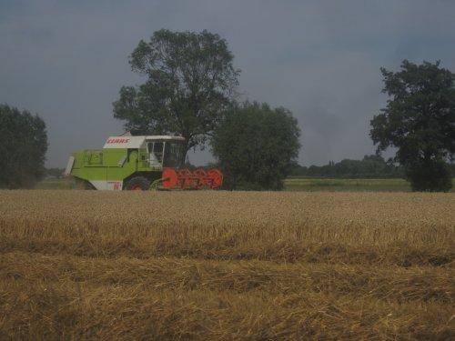 Foto van een Claas Dominator 86, bezig met maaidorsen.. Geplaatst door jordi 1455 op 17-08-2015 om 13:54:18, op TractorFan.nl - de nummer 1 tractor foto website.