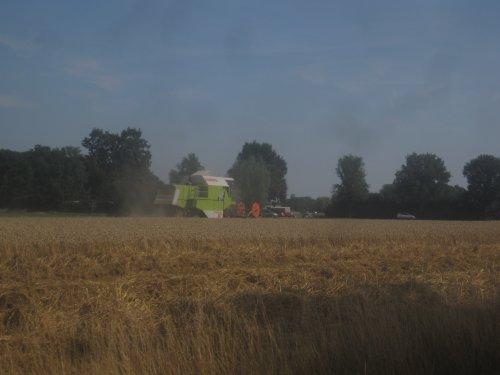 Foto van een Claas Dominator 86, bezig met maaidorsen.. Geplaatst door jordi 1455 op 17-08-2015 om 13:54:26, op TractorFan.nl - de nummer 1 tractor foto website.