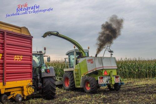 Melkvee/Loonbedrijf Ter horst slingert die jaguar weer eens aan!. Geplaatst door claas 870 speed op 23-10-2015 om 14:05:00, op TractorFan.nl - de nummer 1 tractor foto website.