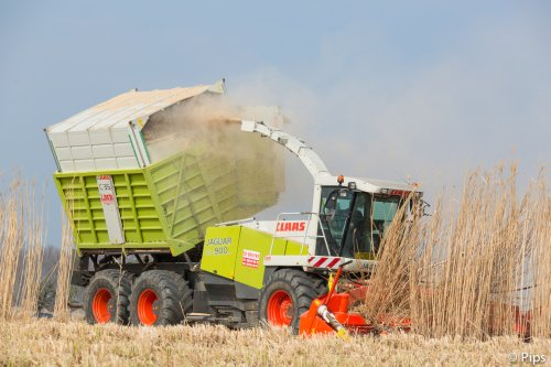 Claas Jaguar Field Shuttle van pips
