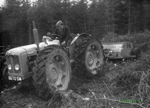 Foto van een County Super 4 http://www.forestry-memories.org.uk. Geplaatst door fomoco60 fomoco60 op 25-12-2016 om 12:22:07, met 5 reacties.