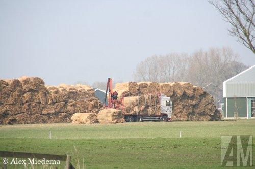 Foto van een DAF XF95, opgebouwd als open laadbak. Koarnjum, 22 maart 2012.. Geplaatst door Alex Miedema op 02-02-2015 om 23:30:53, op TractorFan.nl - de nummer 1 tractor foto website.