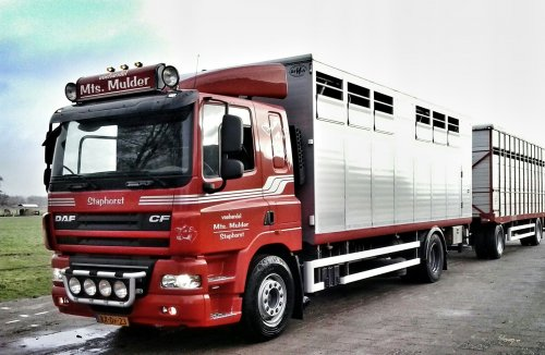 DAF CF85 Wallpaper
