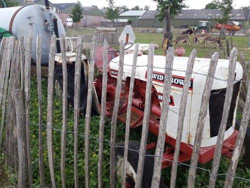 Foto van een David Brown 880 in een kinderboerderij in ammerzoden. Geplaatst door schluterman op 04-08-2019 om 18:59:00, met 5 reacties.