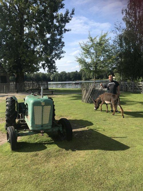 Tractor, ezel en dier van de kinderboerderij. Geplaatst door Controle op 30-07-2020 om 21:18:20, met 9 reacties.
