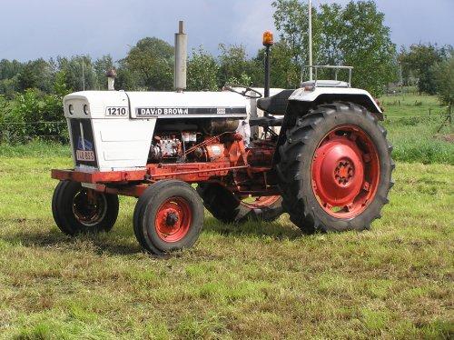 Foto van een David Brown 1210, bezig met poseren.. Geplaatst door valtra6200 op 28-08-2011 om 21:30:41, op TractorFan.nl - de nummer 1 tractor foto website.