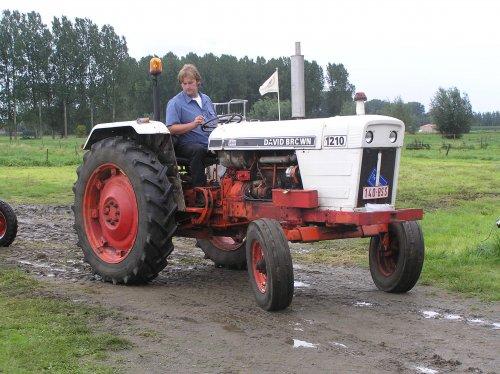 Foto van een David Brown 1210, bezig met poseren.. Geplaatst door valtra6200 op 28-08-2011 om 21:30:59, op TractorFan.nl - de nummer 1 tractor foto website.