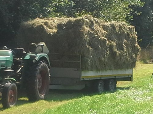 Foto van een Deutz D2506. Geplaatst door Wouterdeutz op 07-03-2017 om 10:20:23, op TractorFan.nl - de nummer 1 tractor foto website.