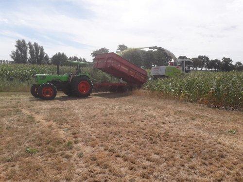 Van de week eerste maïs gehakseld. Een aantal banen door de maïs heen om zo de haspel er door heen te trekken. Ondanks de grond al erg droog was zat en toch nog behoorlijk vocht in de plant en kolf. Goede hoop dat we nog een redelijke maïs opbrengst hebben.