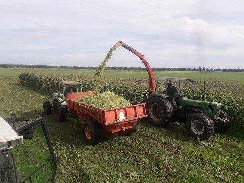 Foto van een Deutz D10006. Geplaatst door dx11 op 17-09-2018 om 21:28:13, op TractorFan.nl - de nummer 1 tractor foto website.