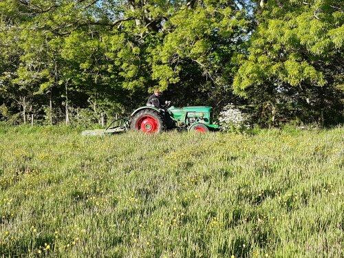 Foto van een Deutz D4005. Geplaatst door deutz110 op 06-05-2020 om 22:37:00, op TractorFan.nl - de nummer 1 tractor foto website.