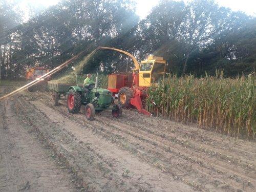 Foto van een Deutz D25 van @JD4450  Ging mooi met aanwerk maken.. Geplaatst door Welten op 13-09-2020 om 16:26:33, op TractorFan.nl - de nummer 1 tractor foto website.