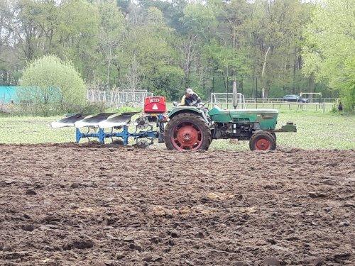 Foto van een Deutz D7006 met Lemken 3 schaar. Samen met de mf 35 een hectare maisland geploegd.. Geplaatst door Wilco vd Kuilen op 08-05-2021 om 18:43:10, met 10 reacties.
