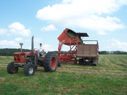 Foto van een Deutz D13006, bezig met gras hakselen.. Geplaatst door superdeutz8005 op 04-11-2008 om 03:10:33, met 8 reacties.