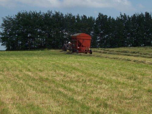 Foto van een Deutz D13006, bezig met gras hakselen.. Geplaatst door superdeutz8005 op 04-11-2008 om 03:13:08, op TractorFan.nl - de nummer 1 tractor foto website.